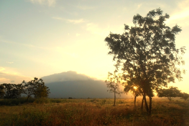 chasing sunset at Baluran, Taman Nasional Meru Betiri. It's really awesome!