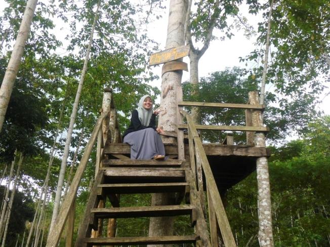 Rumah pohon Jatirono